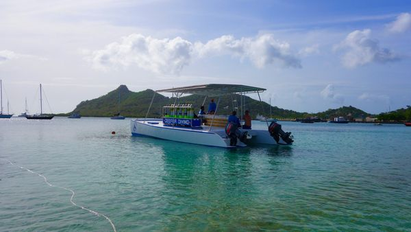 Dive with Deefer Diving Carriacou: Dive Boat Phoenix
